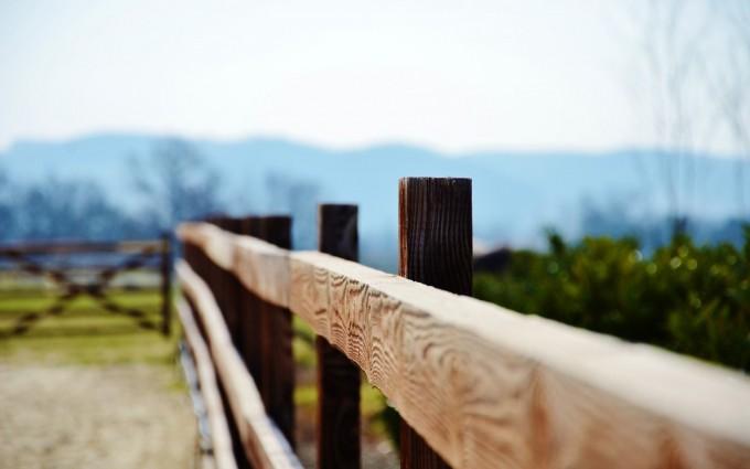 close up fence gate photo