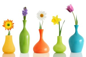 colorful flowers vases