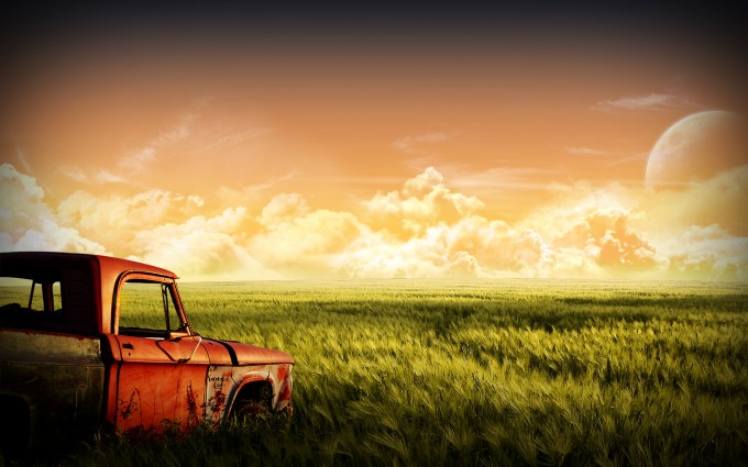 corn field mobile backgrounds