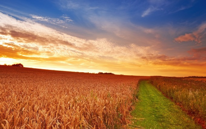 countryside scenery hd