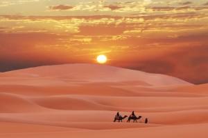 desert wallpapers sunset