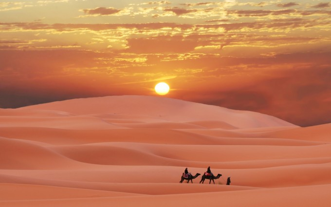 desert wallpapers sunset