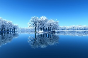 download winter wallpaper
