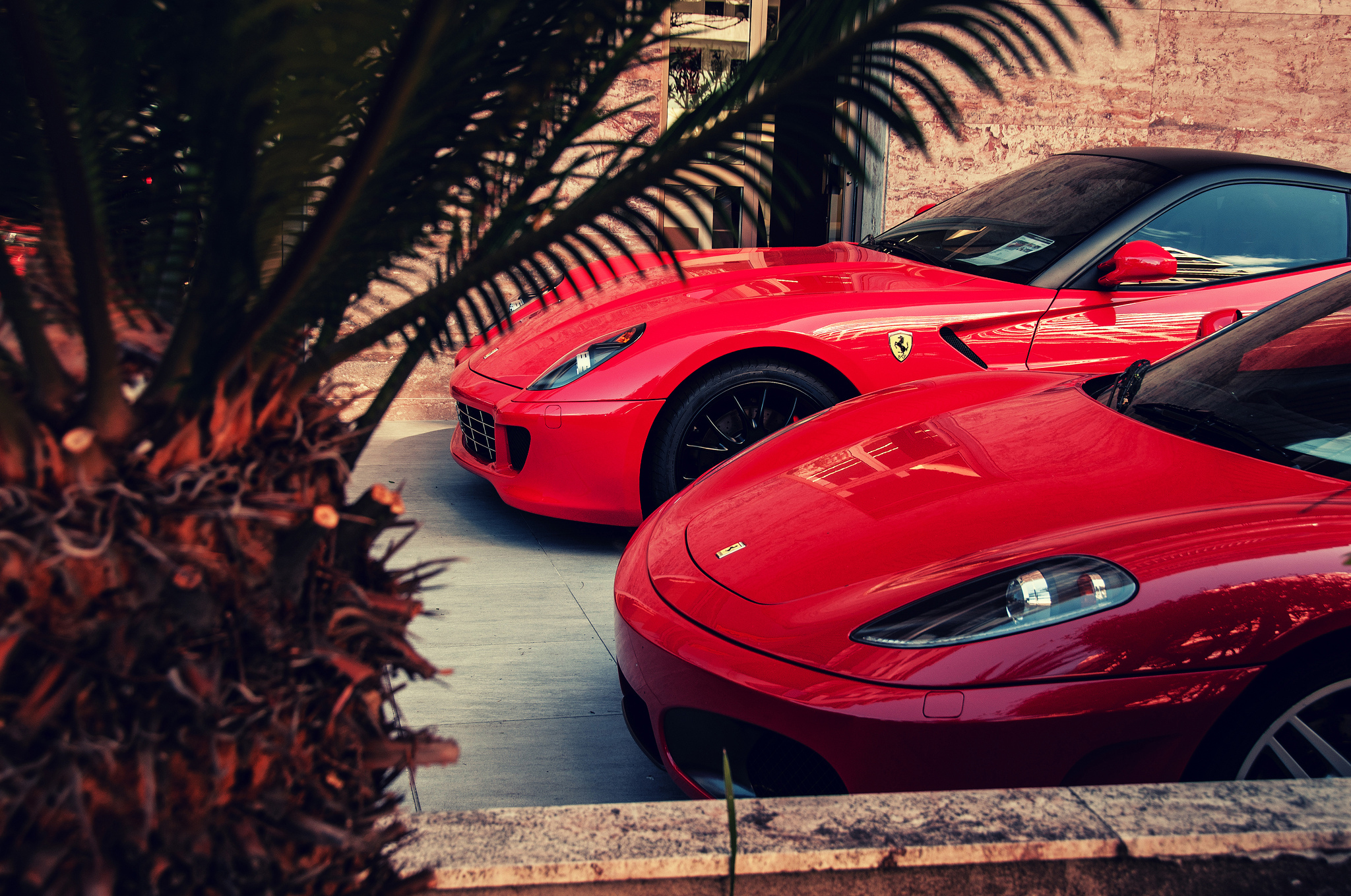 ferrari 360 modena cars