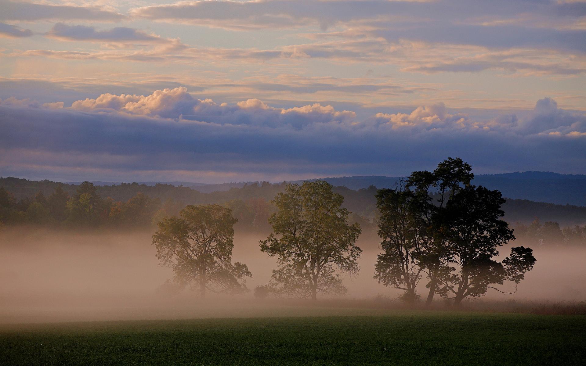 foggy lanscape scenery
