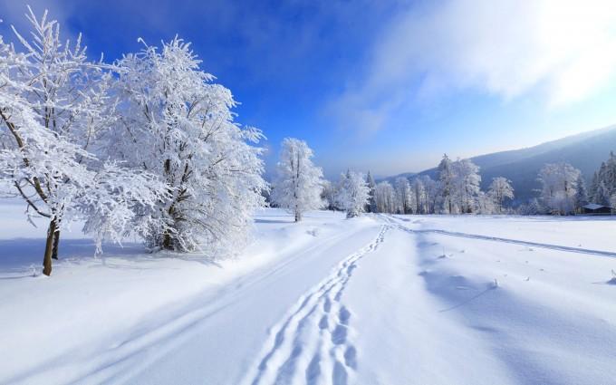 free winter wallpaper download
