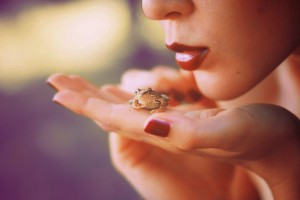 frog desktop download
