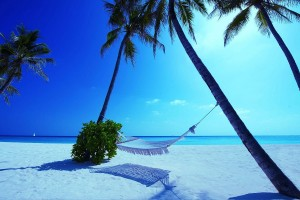 hammock maldives beach nature