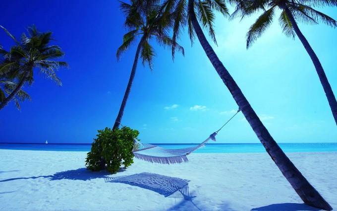 hammock maldives beach nature