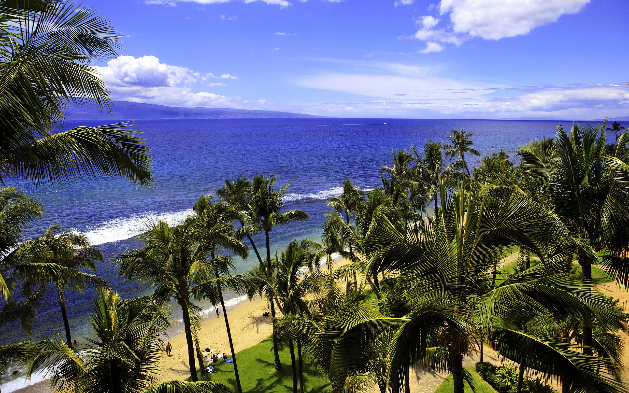 Hawaii Beach Wallpaper Hd Free: Hawaii Beach - HD Desktop Wallpapers