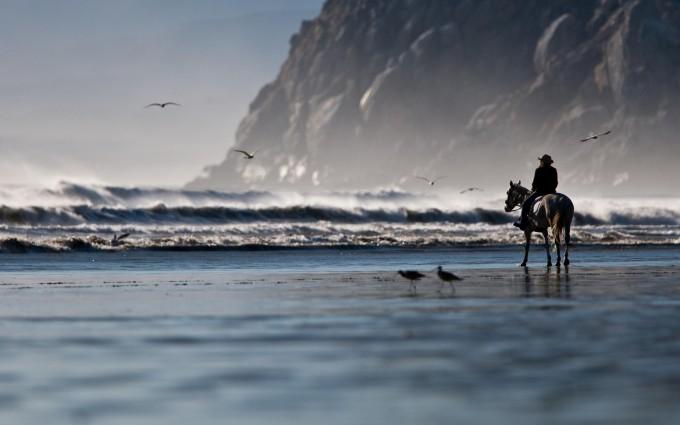 horseriding beach