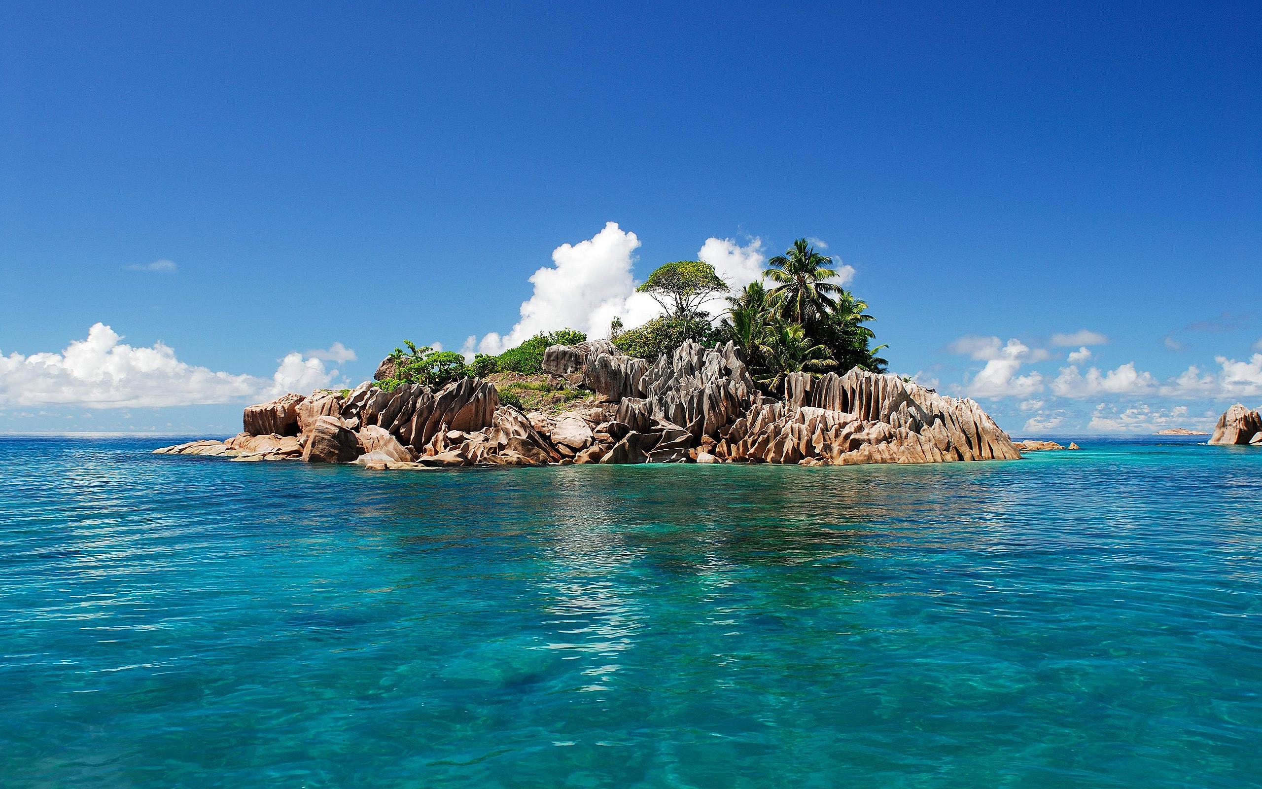 island tropical cute