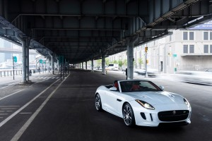 jaguar f type bridge