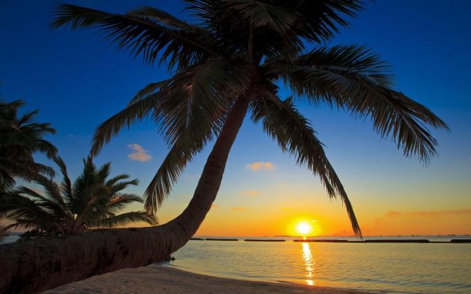 kurumba beach sunset