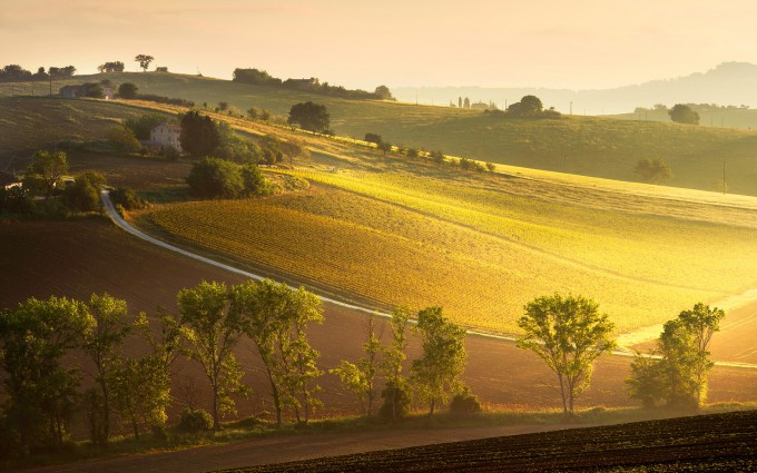 landscape sunrise wallpaper