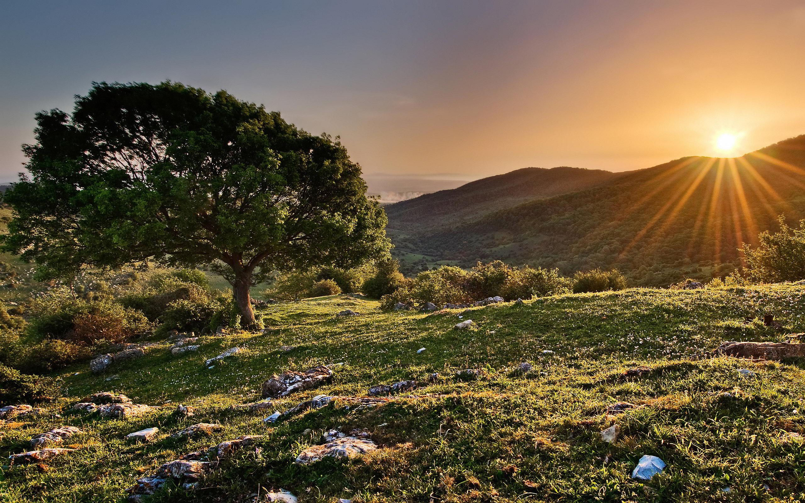 mountain landscape nature