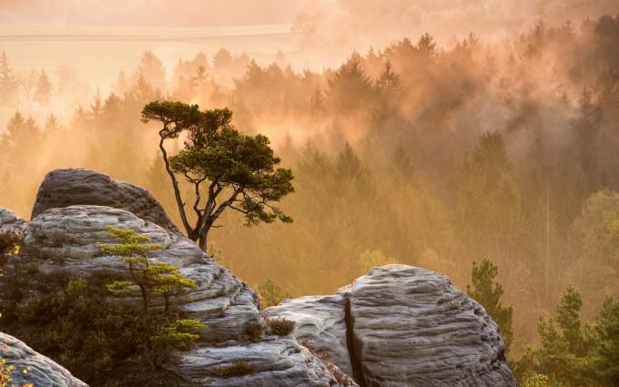 mountain wallpaper top