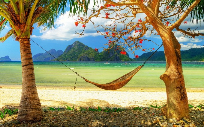 nature beach hammock