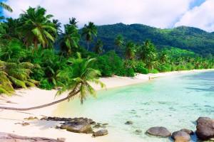 palm beach sand