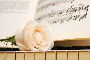 piano rose wallpaper