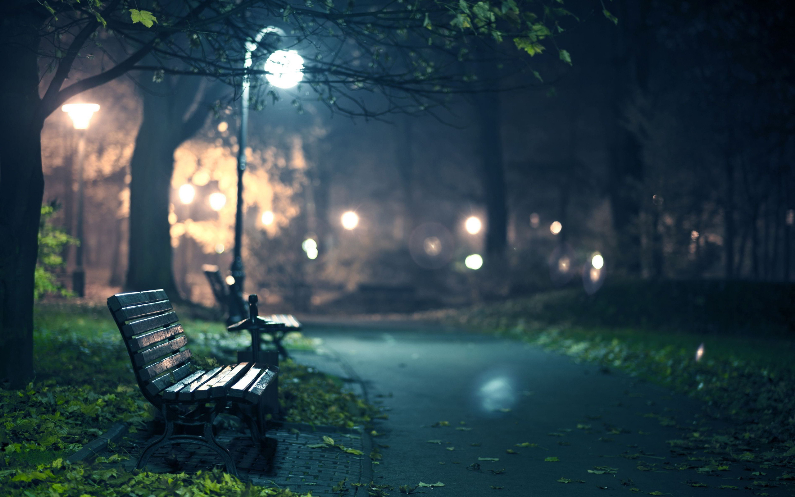 romantic park bench