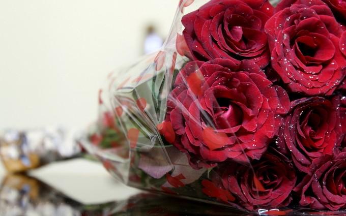 roses romantic love