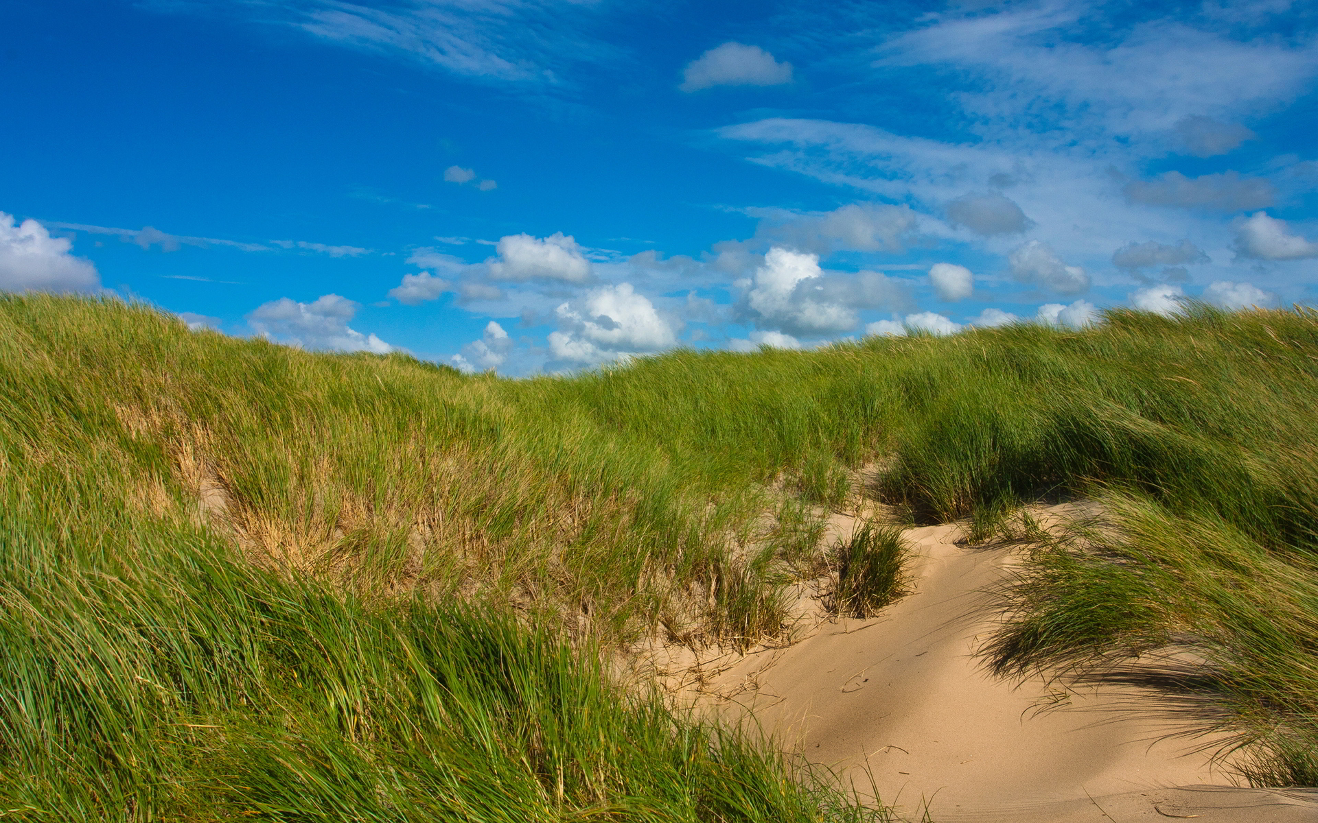 sand dunes nature backgrounds
