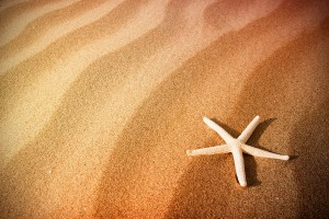 sand wallpaper starfish