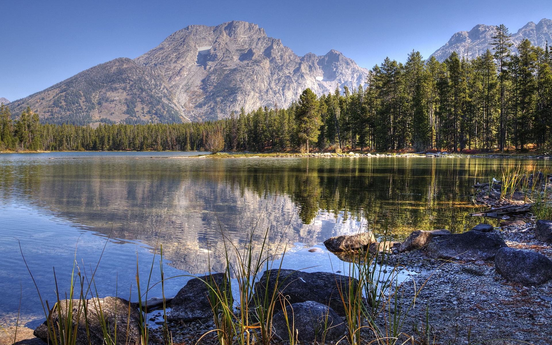 scenery lake winter