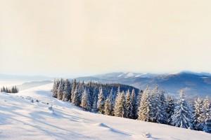 scenery mountain 3d
