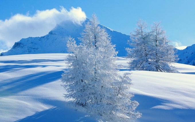snow wallpaper romantic