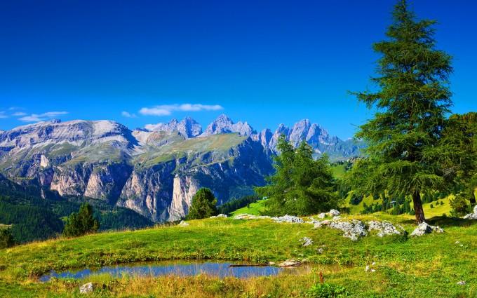summer wallpaper alpine