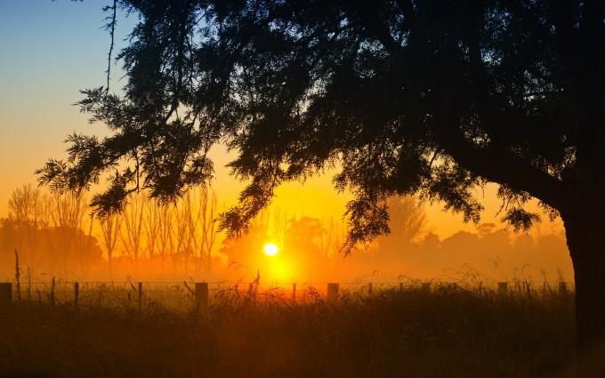 sunrise wallpaper photographt