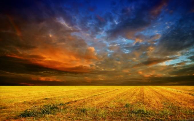 sunset cornfield amazing
