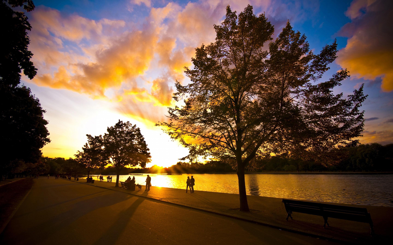 sunset wallpapers walk