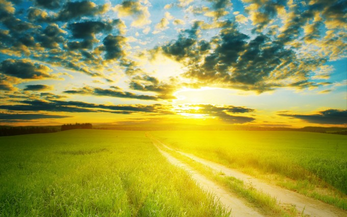 sunshine 1080p wallpaper