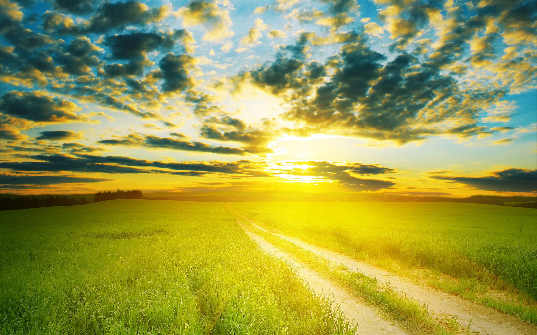 Sunshine 1080p Wallpaper - HD Desktop Wallpapers