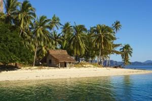 tropical wallpaper beach