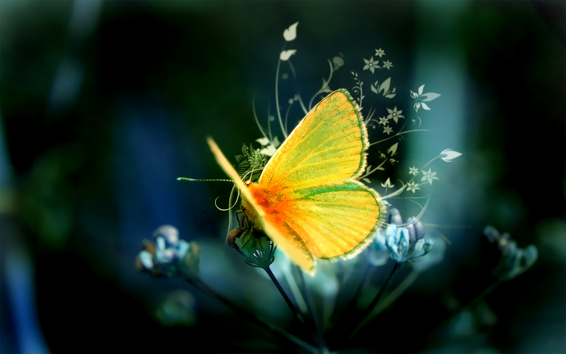 yellow butterfly abstract
