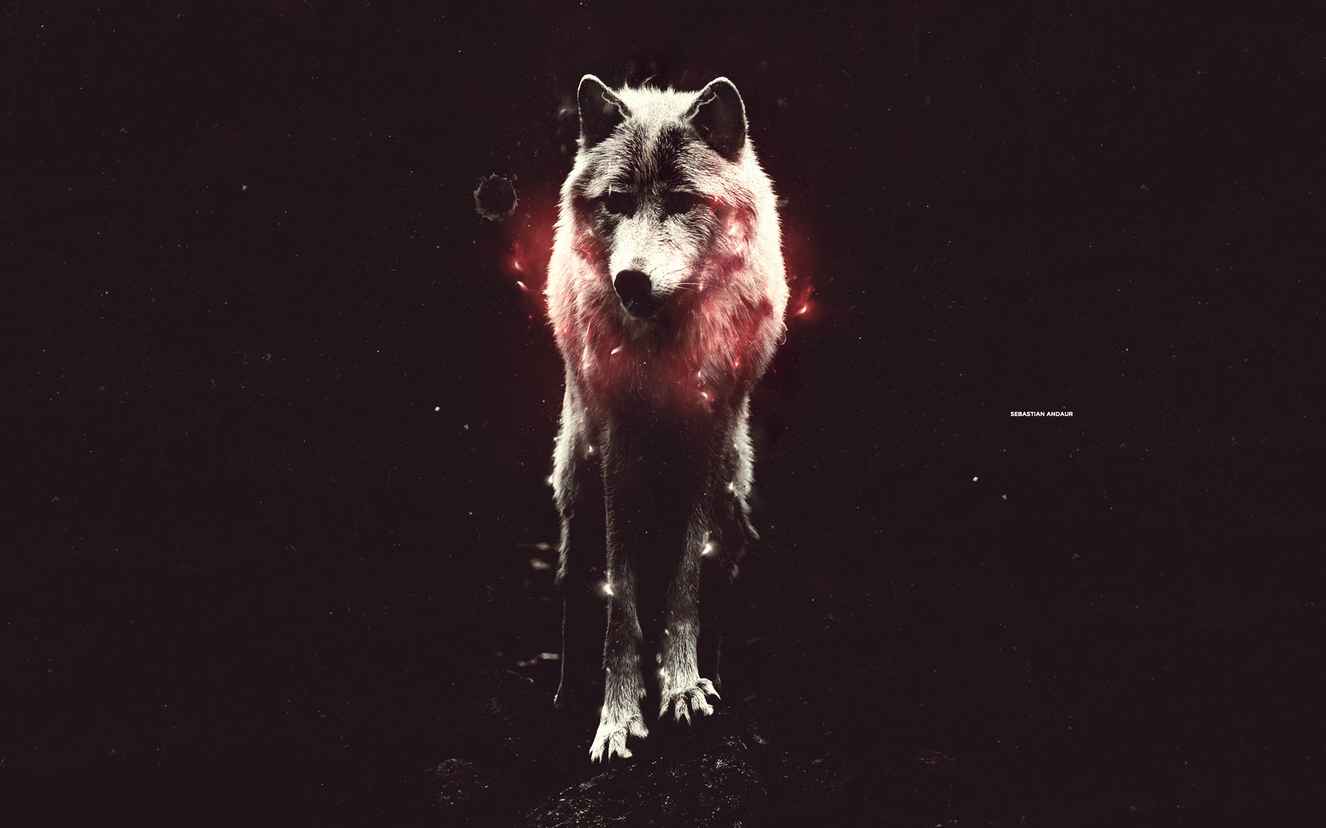 Cool Wallpaper Abstract Wolf - abstract-wallpaper1  Image_571110 .jpg