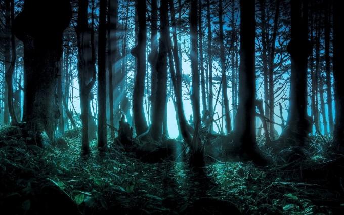 amazon forest wallpaper dark