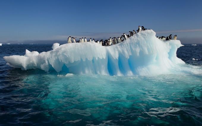 antarctica wallpaper A6 pictures