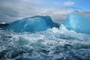 arctic wallpaper nature