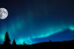 aurora borealis pictures night