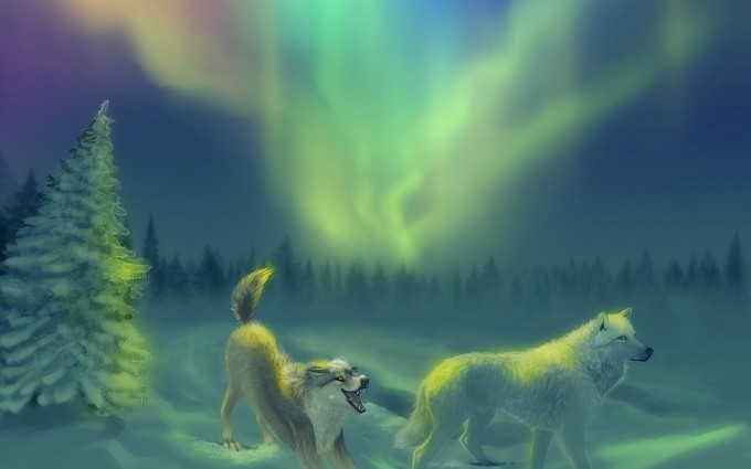aurora borealis wallpaper desktop