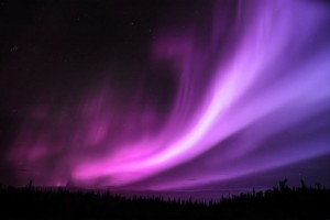 aurora wallpaper purple