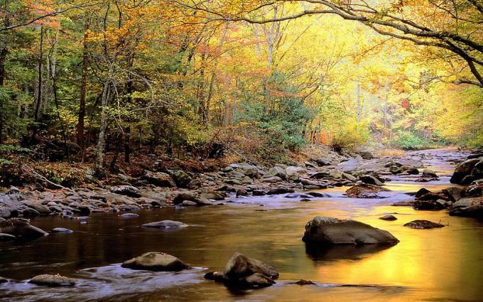 autumn beautiful river