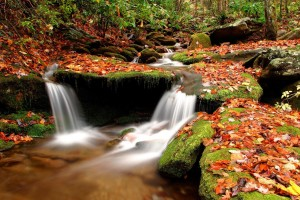 autumn pictures wallpaper