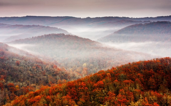 autumn scenery nature