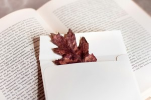 autumn wallpaper book